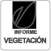 ivegetacion