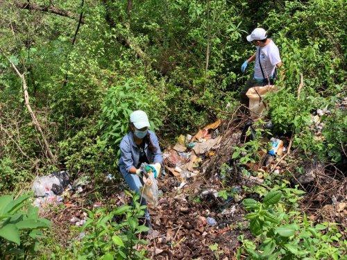 Campaña de limpieza recolecta 1.2 toneladas de desechos