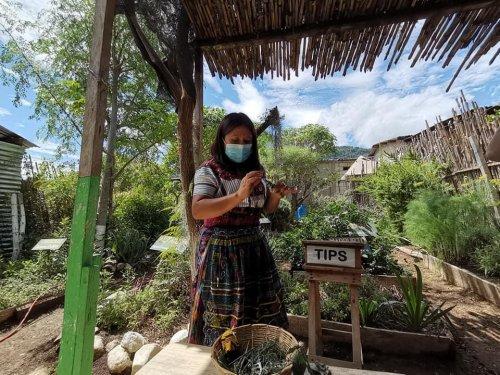 Fortalecimiento institucional promueve intercambio de prácticas ancestrales