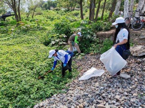 Instituciones se unen para conmemorar el día Mundial del Medio Ambiente